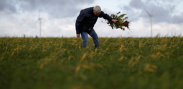French farmers: 3 years too short to develop viable replacement for glyphosate herbicide