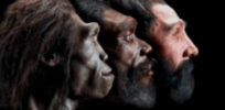 Homo sapiens may only have appeared 300,000 years ago, and evolved modern features gradually
