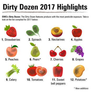 dirty dozen x