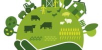 Viewpoint: 'Radical change' needed to make global food system sustainable