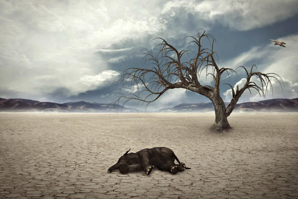 mass extinction worse than thought study drought