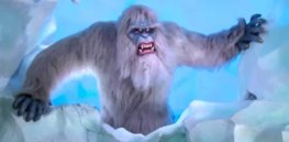 Proof the yeti exists? DNA analysis shows bone 'samples' came from bears