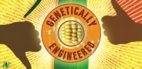 Society of Toxicology: Science has 'overwhelmingly demonstrated' GMO crop safety