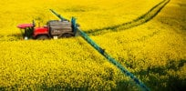 EU may vote on complete ban of neonicotinoid insecticides this week