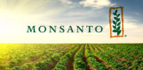New herbicide-resistant GMO crops renew worries about Monsanto's seed market dominance