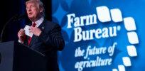 Is President Trump pro-GMO?