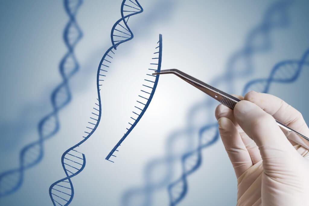 genetic engineering on humans x