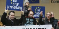 Is glyphosate unsafe? European Food Safety Authority rejects accusations of 'undue industry influence' in rejecting carcinogenic designation