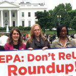 Did the EPA and Monsanto conspire to hide glyphosate's health risks?
