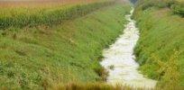 GMO environment 482288