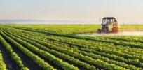 herbicide 432437