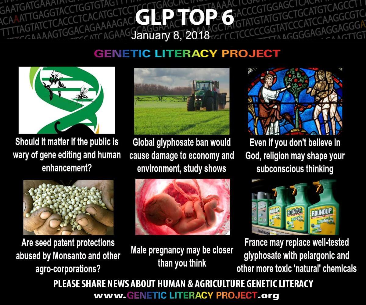 GLP-Top-6-Jan-8-2018