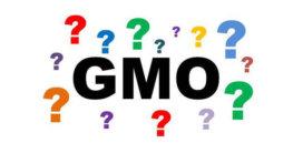 GMO question marks e