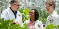 plant scientists 32476