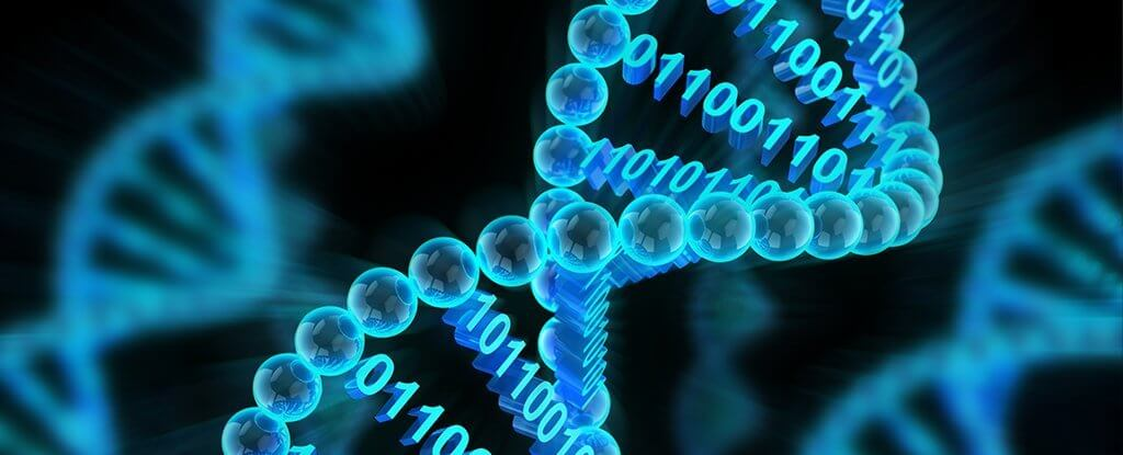 Image result for dna can store data