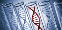 genetics 1 16 18 1