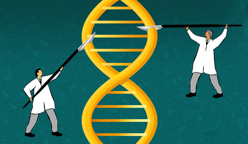 gene editing 34325