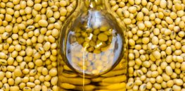 Calyxt gene-edited soybean oil debuts in Midwestern US restaurants