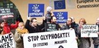 glyphosate iarc cancer herbicide 827427