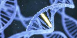 2-19-2018 1822-Gene_Editing_Rid_World_of_Diseases-1296x728-header