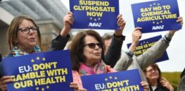 Viewpoint: How European activists lobby for a glyphosate ban despite findings of its safety