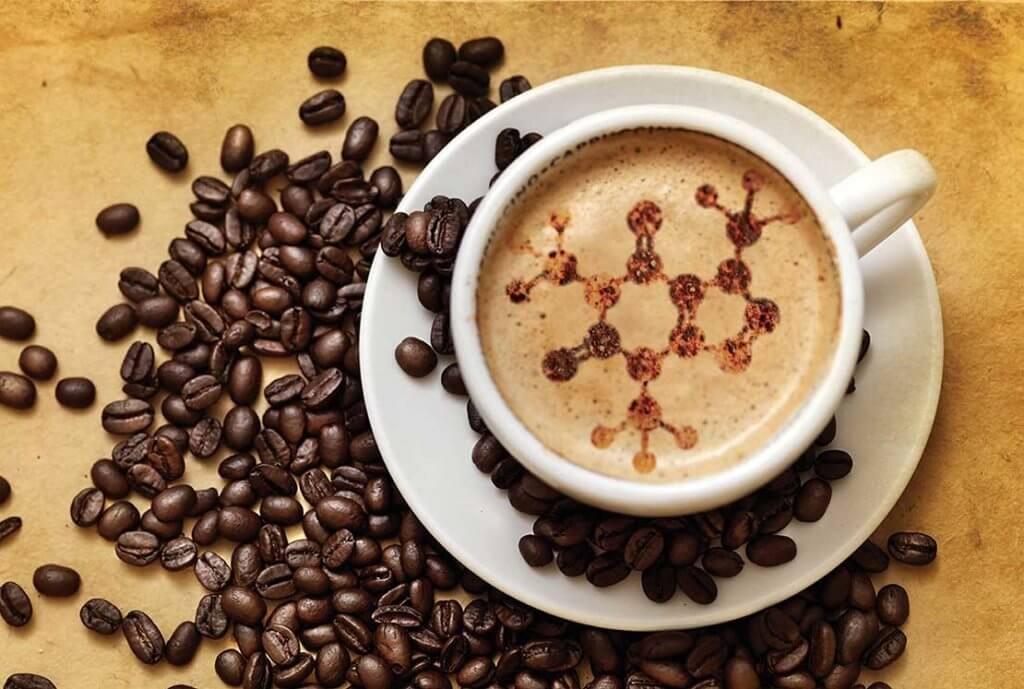 GMO coffee 4382