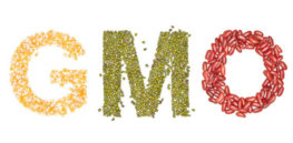 GMO natural 7838437