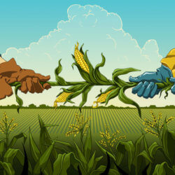 Climate change, COVID-19 and GMOs: When should the public trust expert opinion?