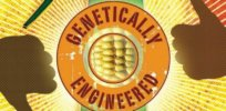 GMO debate 345859