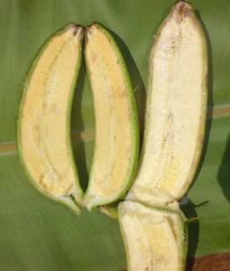 Vitamin banana4 2 28 18