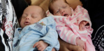 babies 2 6 18