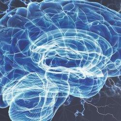 brain 2 12 18