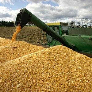 corn combine