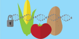 gene editing regulation agriculture 743627