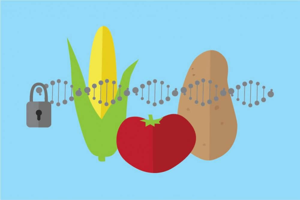 gene editing regulation agriculture 743627
