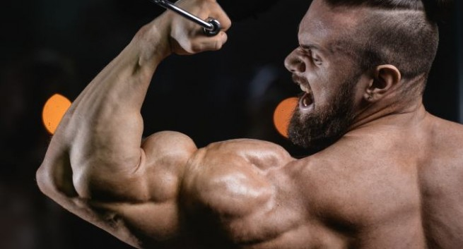 steroids-655x353
