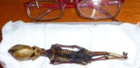'Ata' was no alien: DNA analysis solves mystery of tiny mummified Chilean skeleton