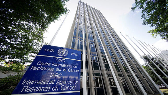 IARC cancer agency 74327