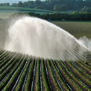 Irrigating fields SW of Killerton Estate NT geograph org uk