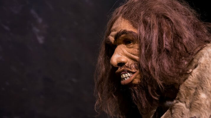 Humans mated with the mysterious Denisovans more than once, as well as with Neanderthals