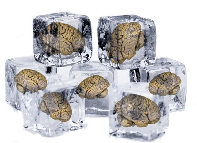 brains 3 19 18