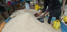 cowpea in market