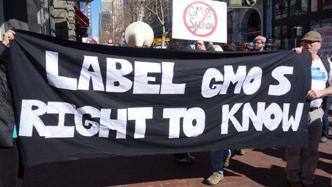 Viewpoint: Why the 'right to know' argument for GMO labeling is nonsense
