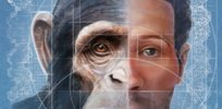 Humanzee: Creating lab-produced human-chimpanzee hybrids would be 'profoundly ethical'
