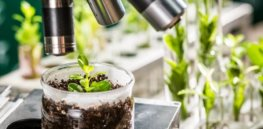 Europe missed out on GMO biotech revolution. What's going to happen with gene editing?