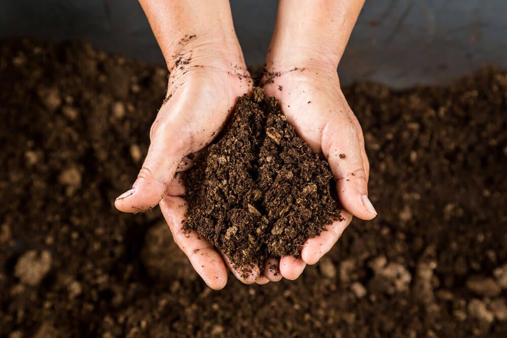 soil 3 19 18