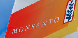 Monsanto to fund gene editing company Pairwise Plants to develop new crop varieties