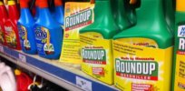 'Junk science'? Judge and UCLA scientist square off in glyphosate-cancer lawsuit