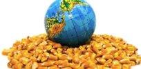GMO organic environment 32747
