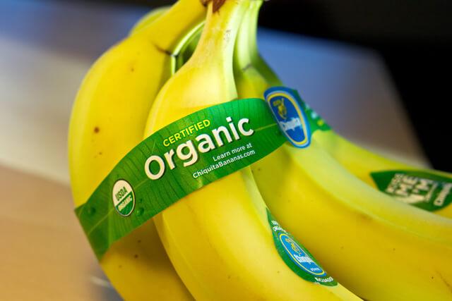 organic food gmo 323799